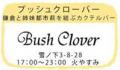 16_bush