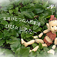YUKI☆ PUPPET WORKS