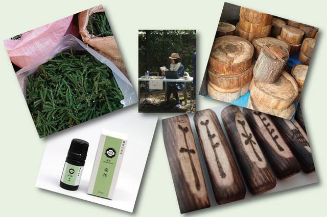 北鎌倉の森Natural Herb、鎌倉RoseCoeurur
