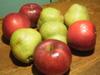 Sanjo_apples